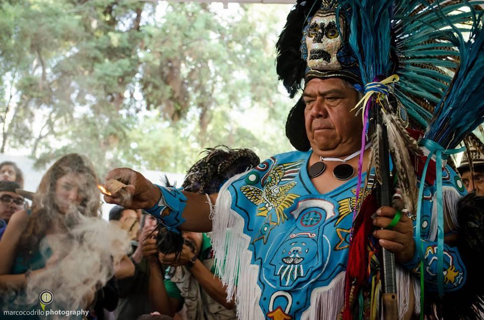 Elder Gorila de Teotihuacan